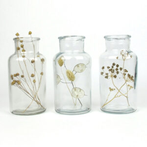 bell jar trio dried linum