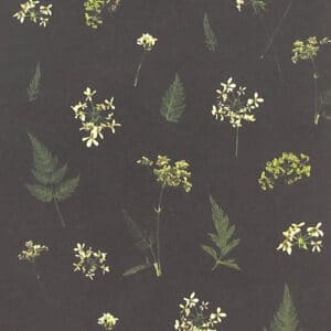 mr studio london cow parsley card zoom