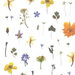 mr studio london - flower pattern card 4 zoom