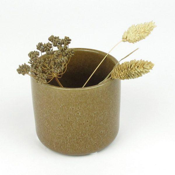 maja mini pot dried canary grass