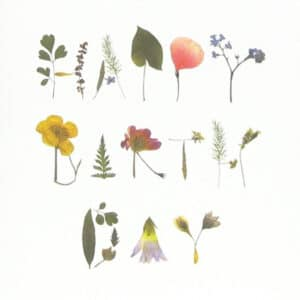 mr studio london birthday card zoom