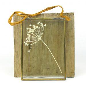 nkuku frame dried umbels light