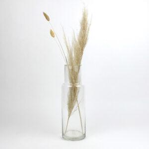 vega clear vase dried pampas