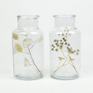bell jar duo dried honesty