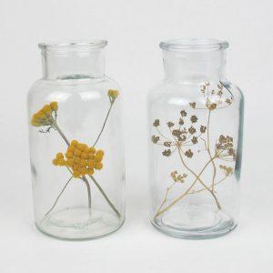 bell jar duo dried lona