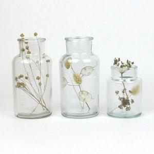 bell jar duo3 dried linum