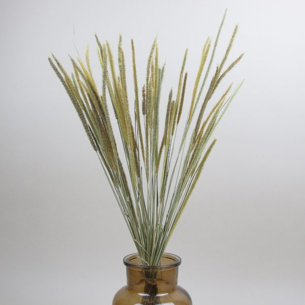 dried blade grass